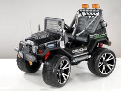 Gaucho SuperPower 24V